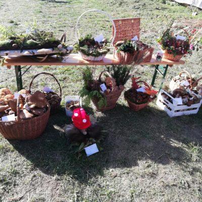 Dary z Grzybobrania w Buczynce